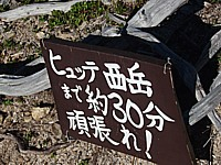 P81201671